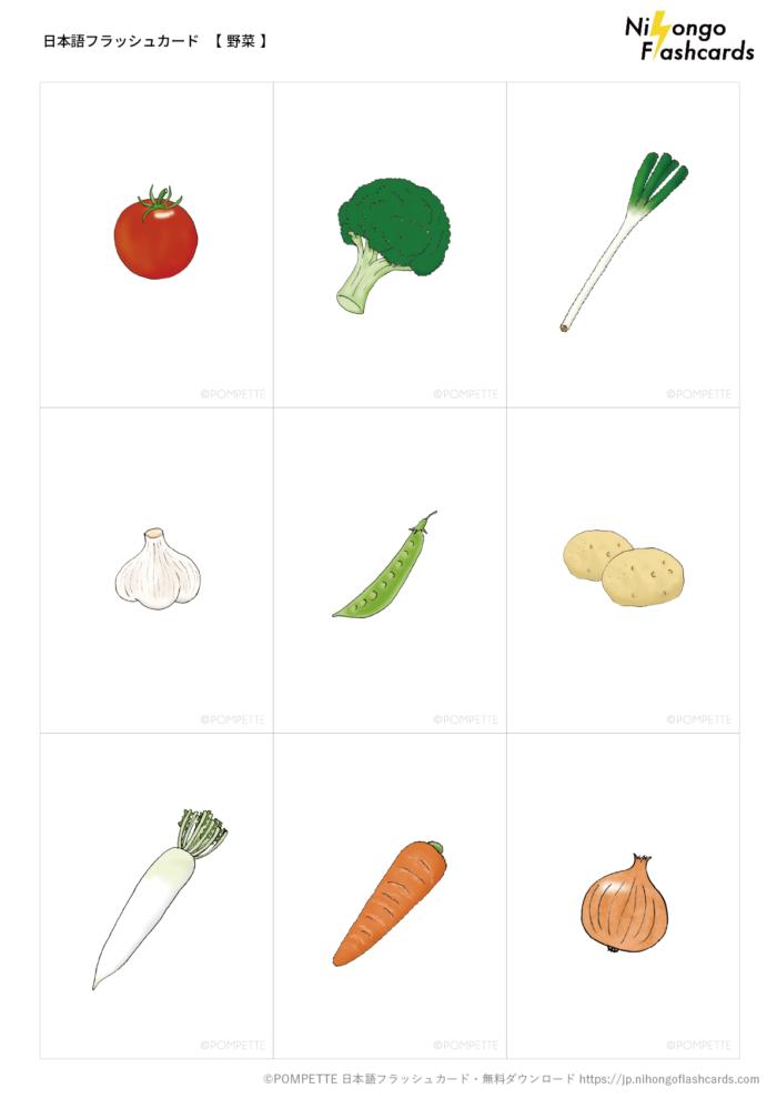 日本語フラッシュカード 野菜 イラスト